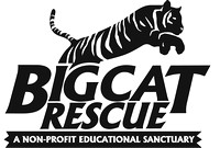 Big Cat Rescue www.bigcatrescue.org