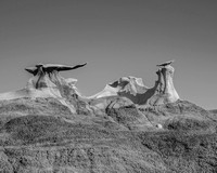 New Mexico - Bisti National Froest - B & W